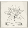 Background with hand drawn sketch beautiful water vector image