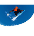Snowboarder vector image vector image