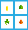 icon flat maple set of aspen oaken leafage and vector image