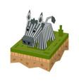 3d isometric zebra vector image