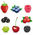 strawberry-blueberry-raspberry-blackberry-cherry vector image
