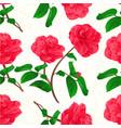 seamless texture flowers camellia japonica stem vector image