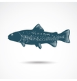 Rainbow Trout vector image