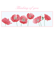 Poppies Thinking of you Card vector image