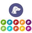 dalmatians dog set icons vector image