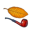 Luxurious wooden tobacco smoking pipe sketch vector image