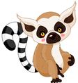 Cartoon lemur vector image