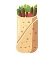 Shawarma icon cartoon style vector image