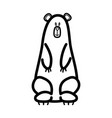 black and white drawing of bear vector image