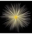 fireworks explosion fireworks vector image