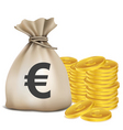 Euro bag coins vector image