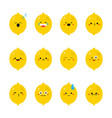 lemon modern flat emoticon set vector image