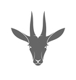 Isolated antelope on white background vector image vector image