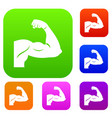 biceps set collection vector image