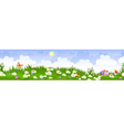summer landscape panorama vector image