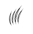 claws marks vector image