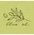 Olive oil badge vector image