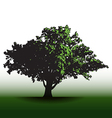 A large glorious old oak tree vector image