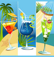 Tropical drinks vector image