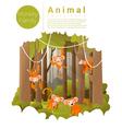 Forest landscape background with Monkeys vector image