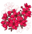 Plum blossom vector image vector image