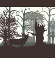 deer in wood in the morning vector image