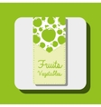 fruits and vegetables design vector image