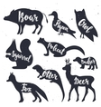 Wild animals silhouettes with lettering boar vector image