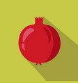 pomegranate flat icon vector image