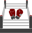 boxer ring with gloves vector image vector image
