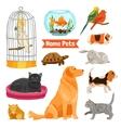 Home Pets Set vector image