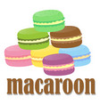 font design with word macaroon vector image