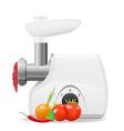 electric kitchen grinder 02 vector image