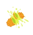 Kiwano Cut In The Air Splashing The Juice vector image