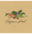 Organic food badge vector image