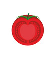 tomato slice isolated red juicy vegetables on vector image