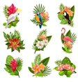 Tropical birds and flowers pictograms set vector image