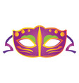 isolated carnival mask vector image