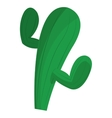 cactus cartoon icon vector image