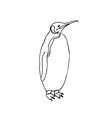 emperor penguin vector image