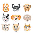 set of funny cartoon dogs heads dogs of different vector image
