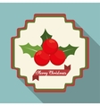 Berry and leaves of Christmas season design vector image