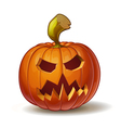 Pumpkins Scary 3 vector image