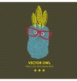 Cute indian owl vector image