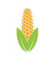 Corn logo vector image vector image
