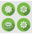 Flower icons set Lily waterlily chamomile blue vector image