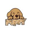 cute little puppy vector image