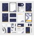 Corporate identity template blue line vector image