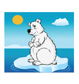 polar bear global warming vector image