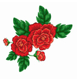 flower rose vector image
